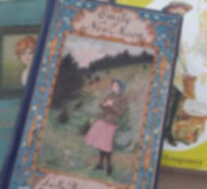 Emily of NM cover 2.jpg