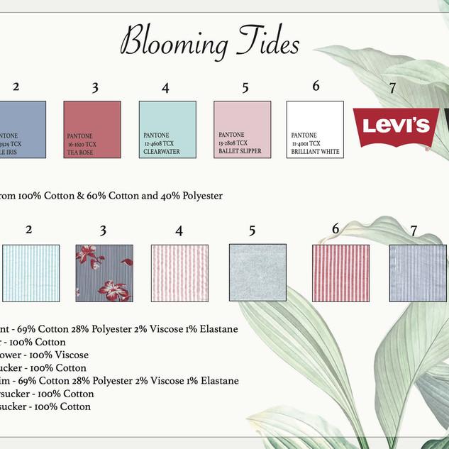 Levis Presentation _Page_06.jpg