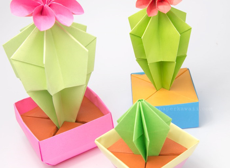 Origami for Understanding the Brain and Anxiety