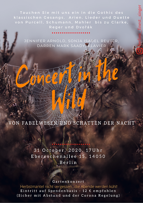 Concert in the Wild A4.png