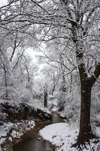 20100212-Snow-0035.jpg