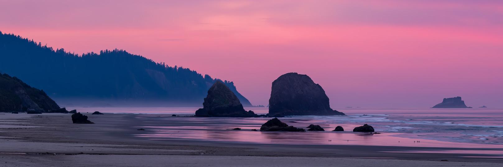 The Majestic Pacific Coast