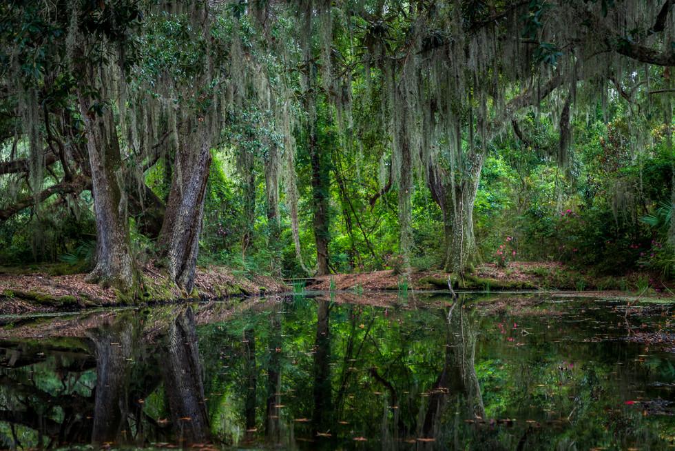 20201009_Charleston_5092.jpg