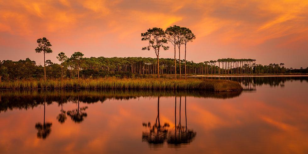 20201003_Florida_260-Pano.jpg