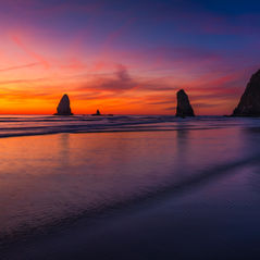 20191010_Oregon_2178-Edit-Edit.jpg