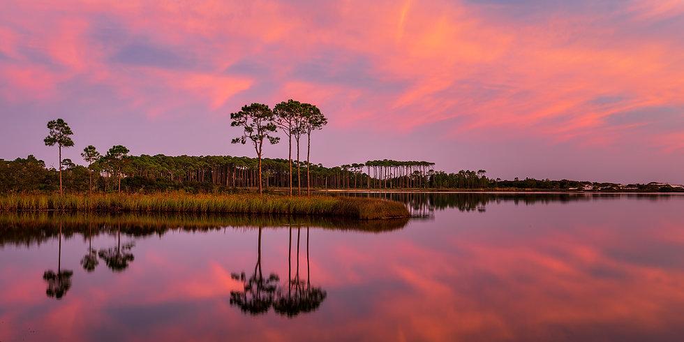20201003_Florida_275-Pano.jpg