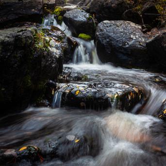 1410_Colorado_4246.jpg
