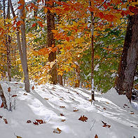 Early Snow - Photograph by Ken Schuster.