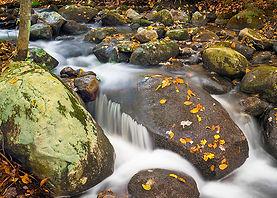 Ring Brook ROCKS! - Photograph by Ken Schuster.
