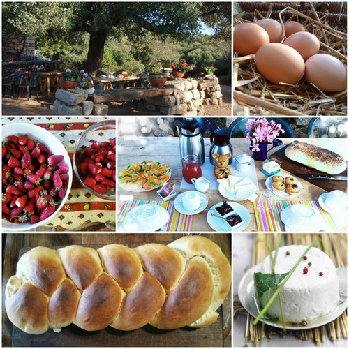 breakfast at agriturismo farm camping stazzu la capretta