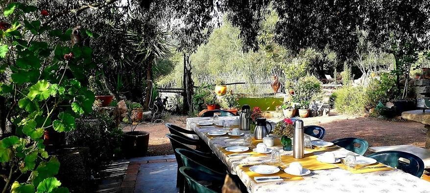 table dejeuner dehors red booking.jpg