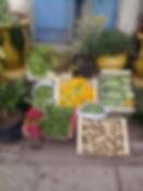 Notre Récolte au guesthouse stazzu la capretta