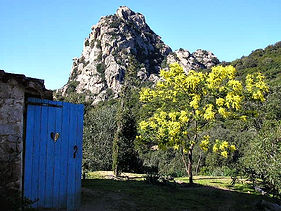 the beautiful Montilongu mountain just lovely to look at from our land stazzu la capretta