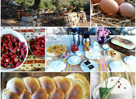Breakfast with our genuine farm produce without pesticides 100% natural.