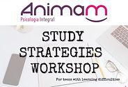 Study%20Strategies%20Workshop_edited.jpg