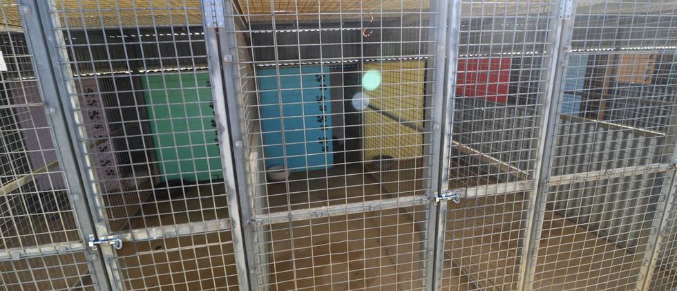 small kennel.JPG