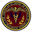 academy logo3.png