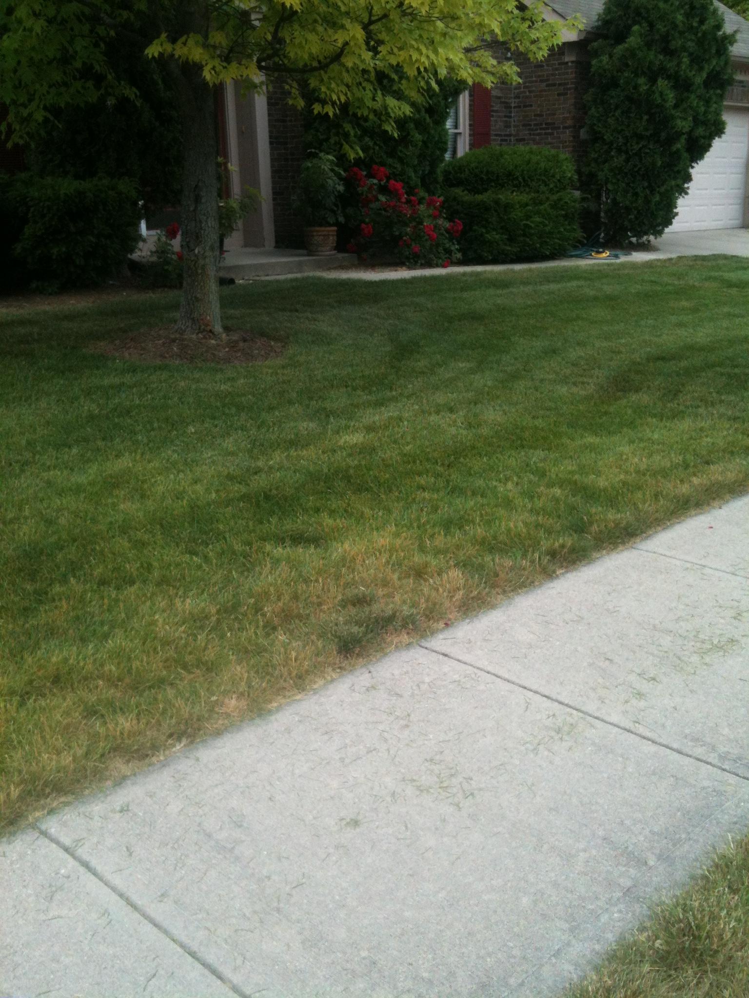 Sidewalk edges
