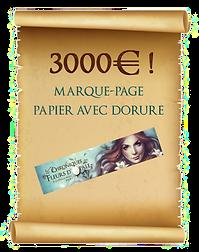 3000 copie.png