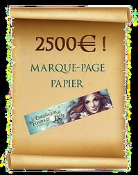2500 copie.png