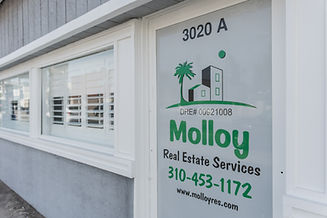TO-Molloy-8549-Lightroom.jpg