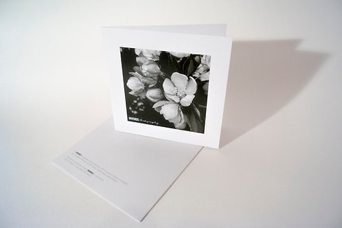 10-Pack B&W Note Cards