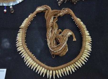 Colar de dentes de macaco (Mentuktire/Kayapó)