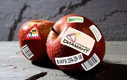 Яблоко с наклейками, Яблоко, Наклейки
