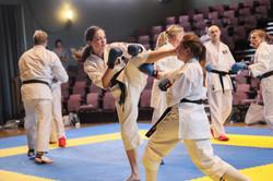 Kumite (free fighting)