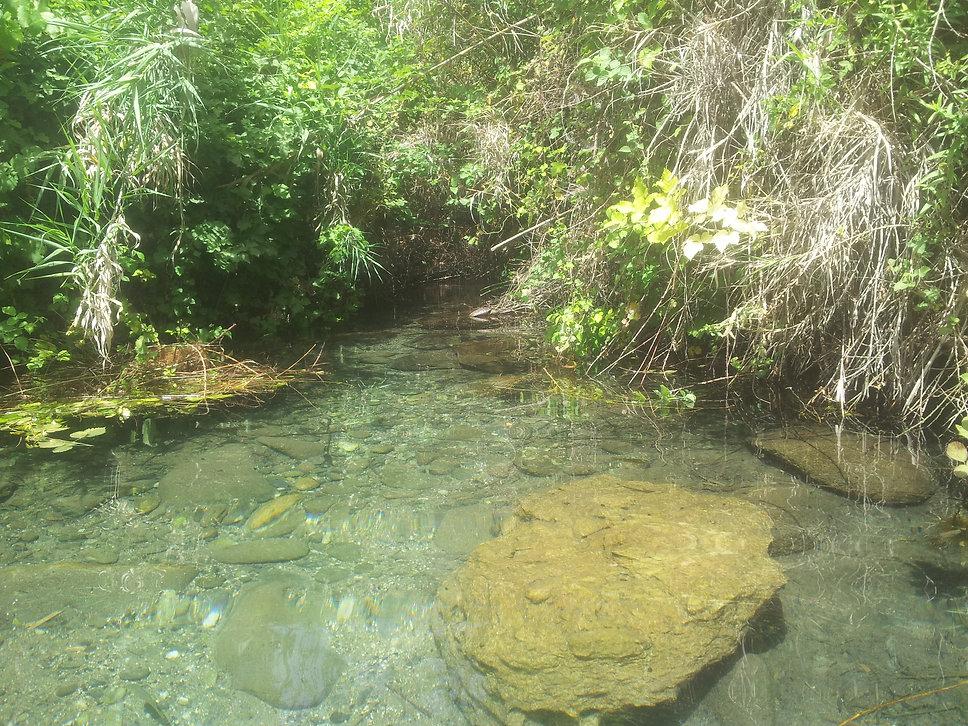 Israel Upper Galilee Adventures