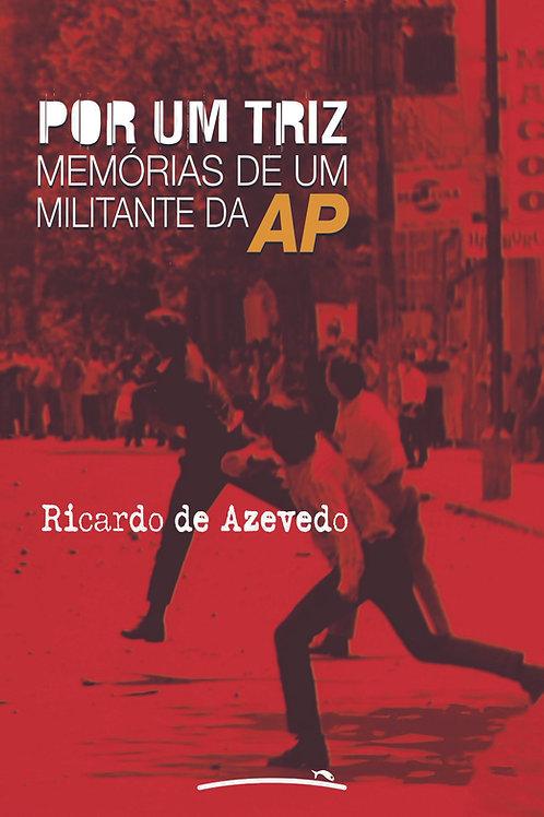 Por um Triz (ebook)
