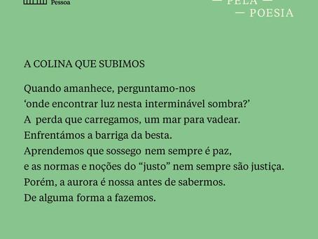 """""""A colina que subimos"""" tradução de Raquel Lima para o poema de Amanda Gorman"""