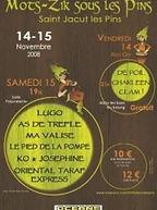 Affiche Mots Zik 2008