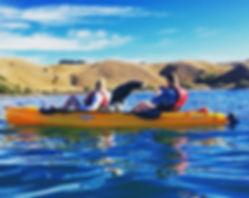 Seal Kayak Kaikoura, jumping seal.