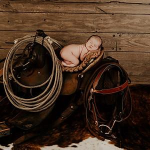 {SWTD} Newborn Session