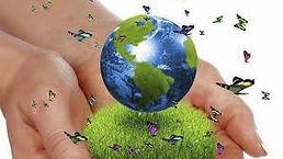 sustentabilidad 2.jpg