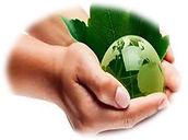 sustentabilidad 5.jpg