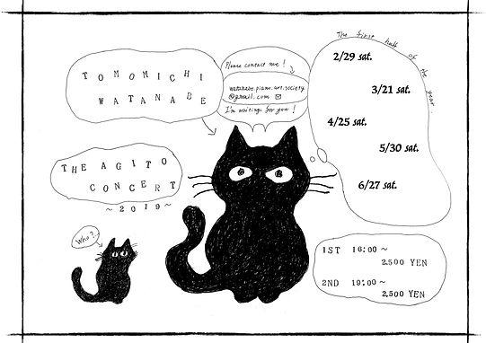 アジコン猫web.jpg