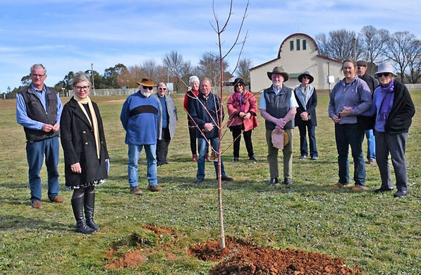 news-showground-tree-planting.jpg