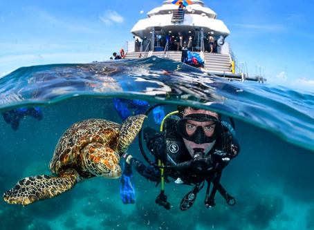6 Reasons to Scuba Dive Egypt's Red Sea