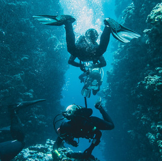 Underwater Photography - Mo2 Film Production Middle East