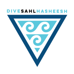 Dive Sahl Hasheesh Logo Color Final with