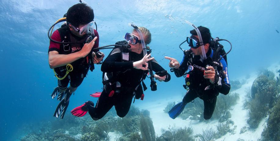 Try Diving Sahl Hasheesh - EXSH