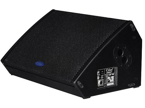 "CM15 15"" Foldback Monitor"