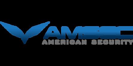Amsec safe logo