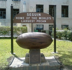 Seguin Home of th Worlds Largest Pecan