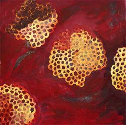 Honeycomb 13
