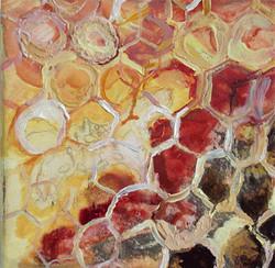 Honeycomb 26