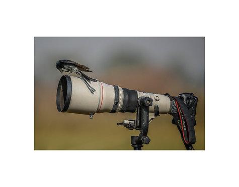 Photographers Friend