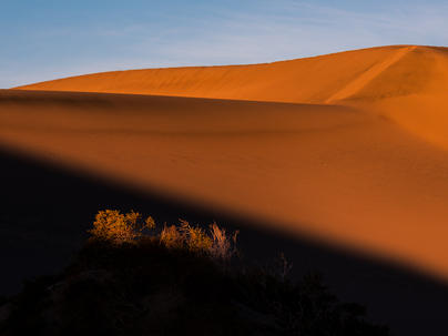 First light over the dunes